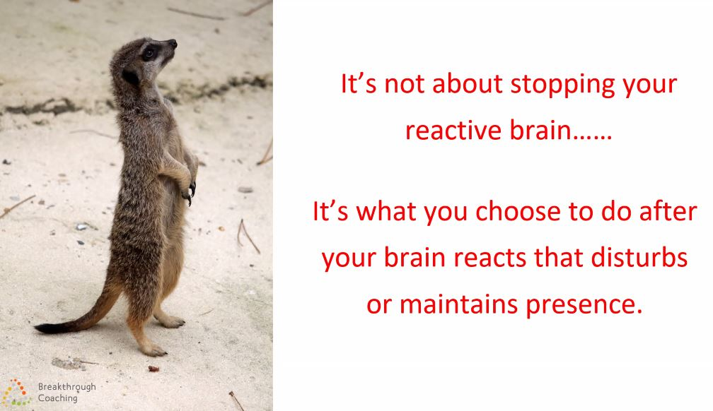 Move past your gut feelings and fear; don't let them BE your reaction